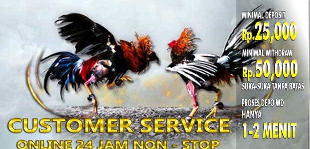 Daftar Main Sabung Ayam S128