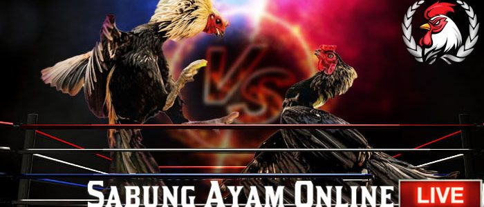 Situs Judi Adu Ayam Online S128
