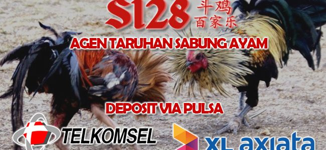 Judi Online Adu Ayam Deposit Pulsa