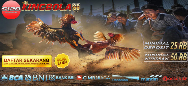 Bandar Judi Sabung Ayam S128 Online